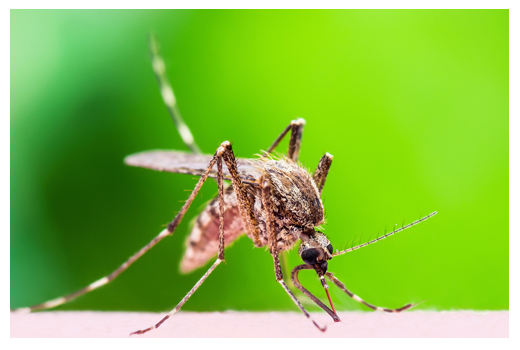 West Nile Control Program